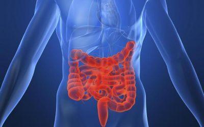 מחלת קרוהן – טיפול טבעי ויעיל בקרוהן Crohn